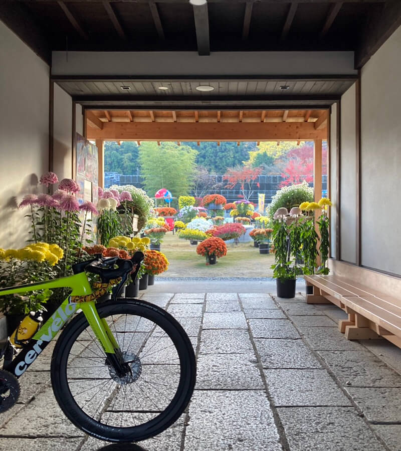 笠間市内の名所を自転車でめぐりませんか